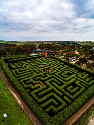 Drone photo of the maze