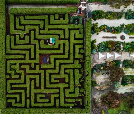 Aerial photo of the Maze and Gardens